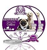 Prowithlin - Collar Antipulgas para Perros