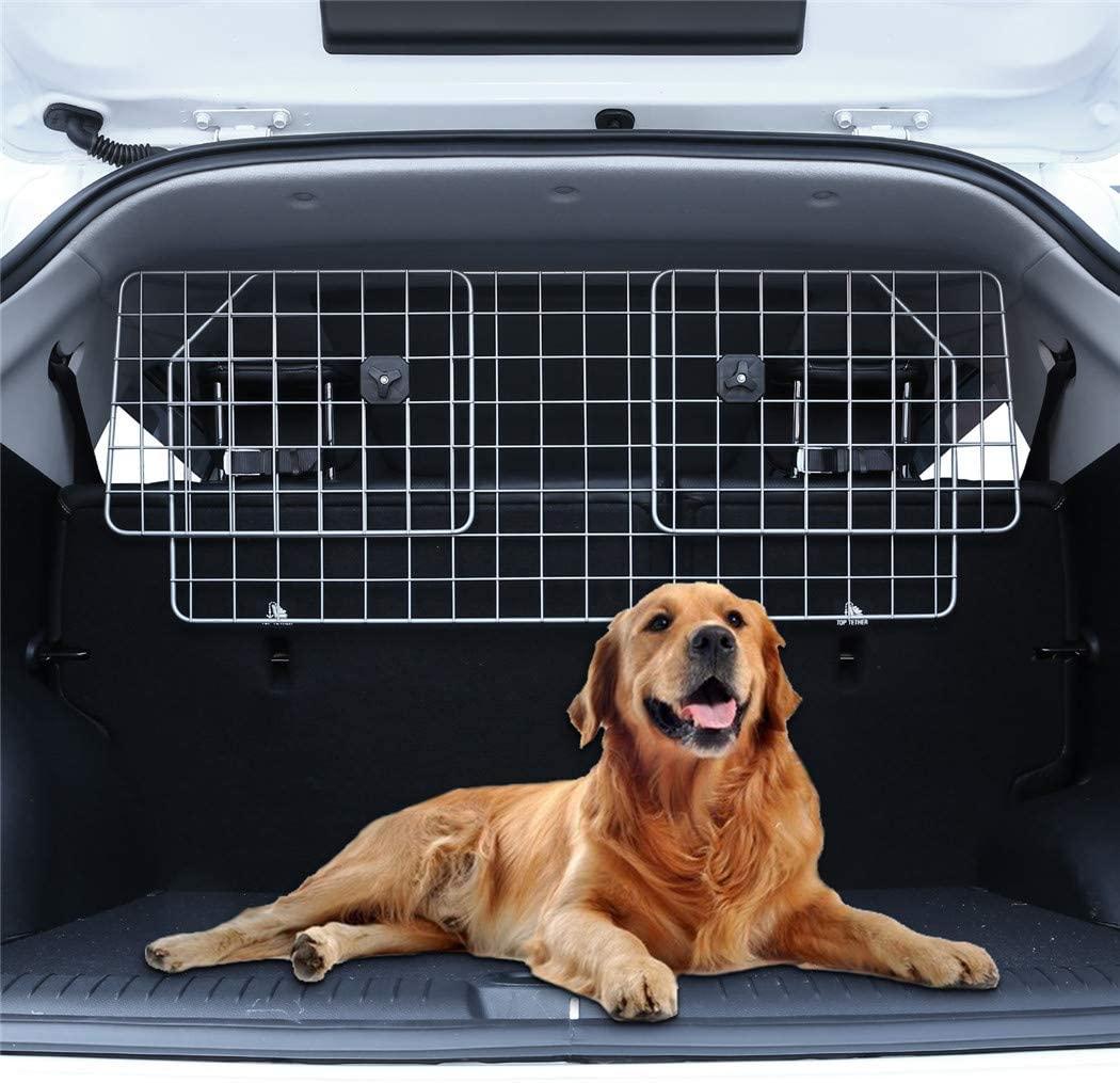 perro coche rejilla