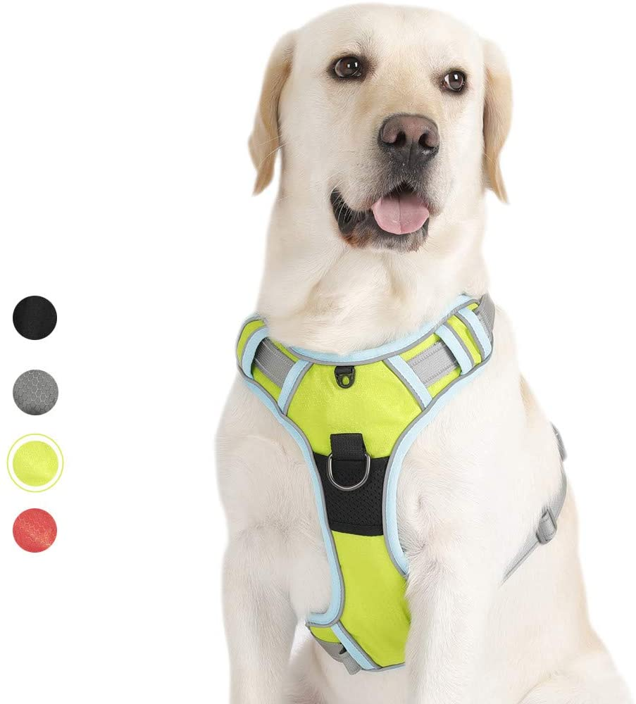 PETTOM Arnés del Perro Ajustable Arnés Nylon 3M Reflectante