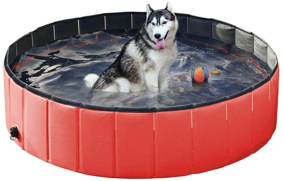 Wodondog Piscina para perros